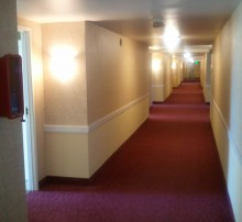 Hotel wallcovering, hotel interior corridor, senior living facility, wallcovering installation